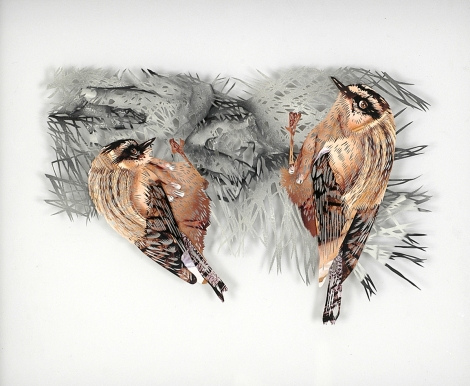 Tom Gallant 'Firecrest' (2006) Hand cut paper