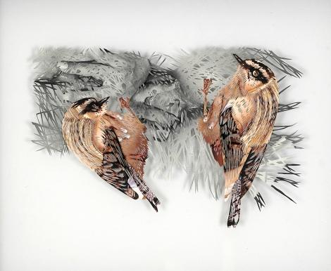 Tom Gallant 'Firecrest' (2006) Hand cut paper