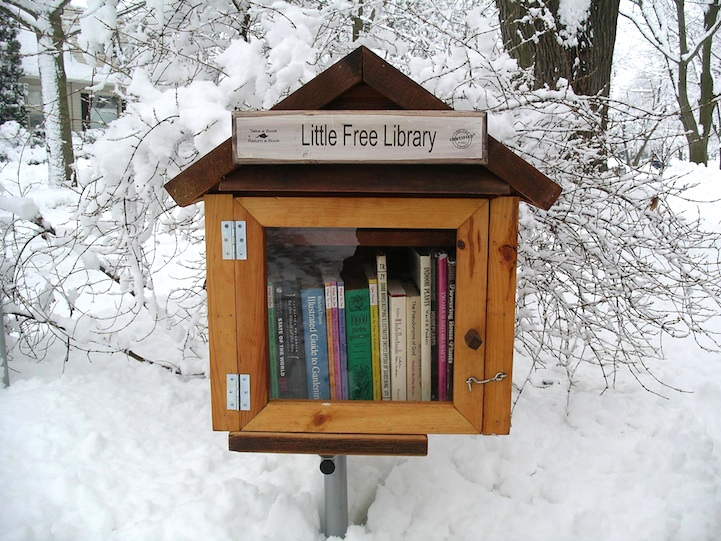 Little Free Library 4