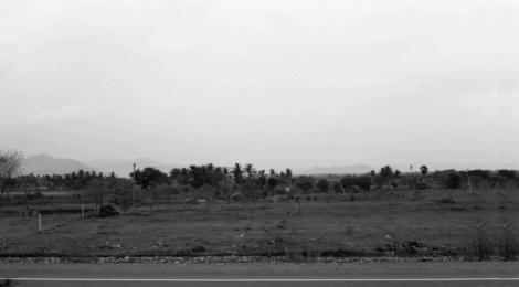 Savinder Bual Road 2011