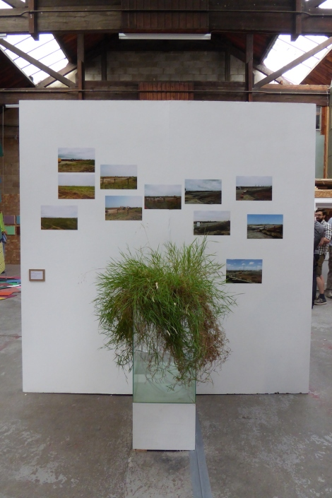 Wastelands Ovada Gallery 20