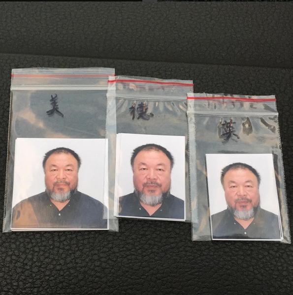 Ai Weiwei Visa 2015 5