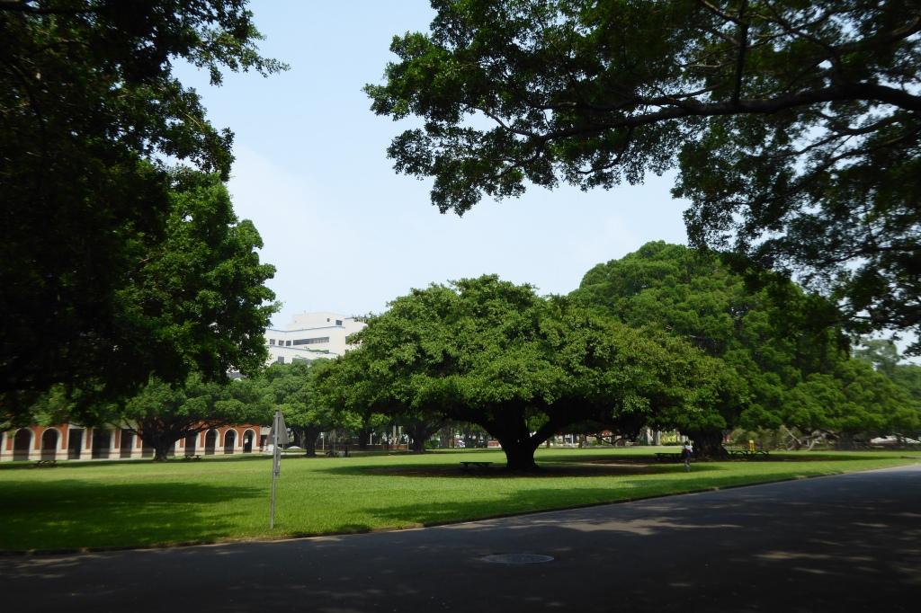 Teaching at NCKU Tainan 13