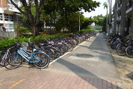 Teaching at NCKU Tainan 18